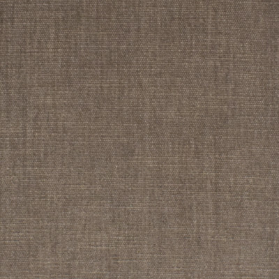 S3871 Birch Fabric