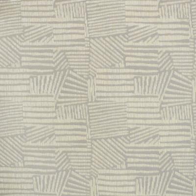 S3876 Dove Fabric