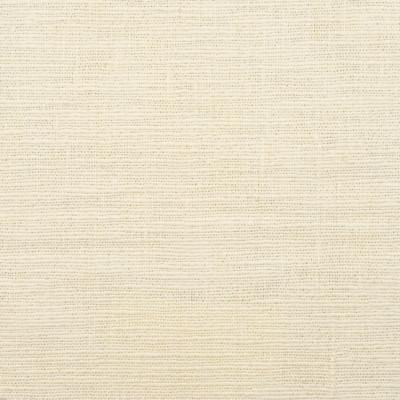S3882 Canvas Fabric