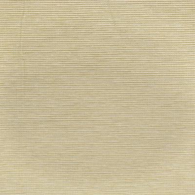 S3898 Sand Fabric