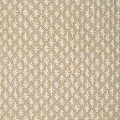 S3906 Dune Fabric