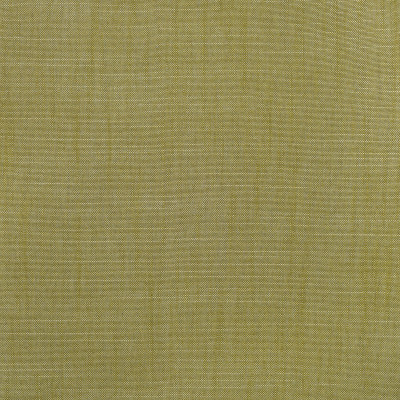 S3954 Fern Fabric