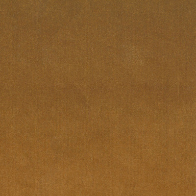 S4157 Ambergold Fabric