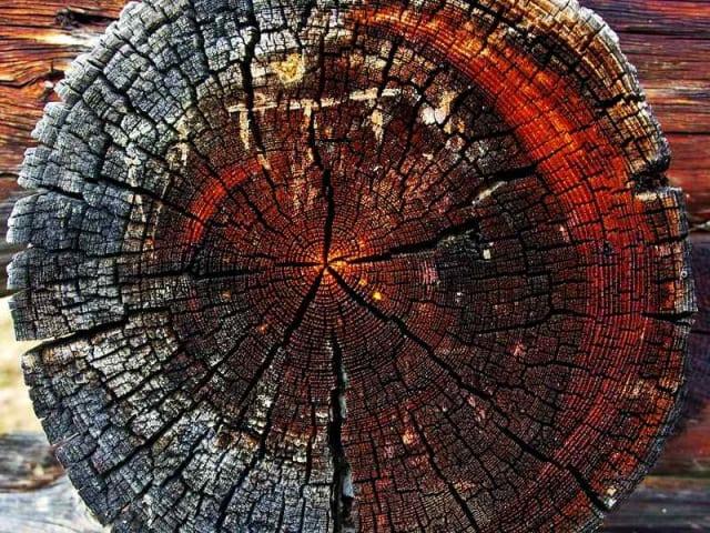 economia circolare - circular economy