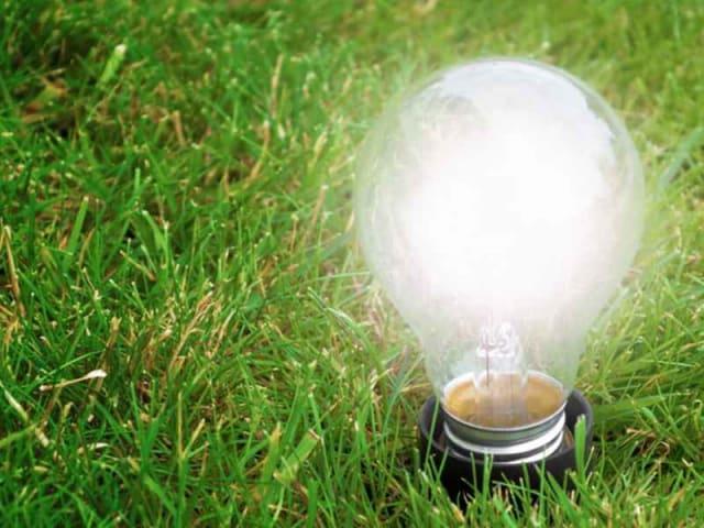offerte di energia elettrica - energia verde