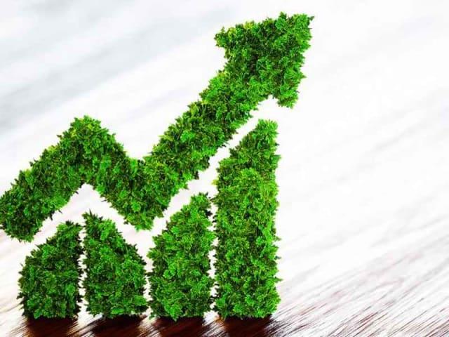 Misurare l'impatto ambientale