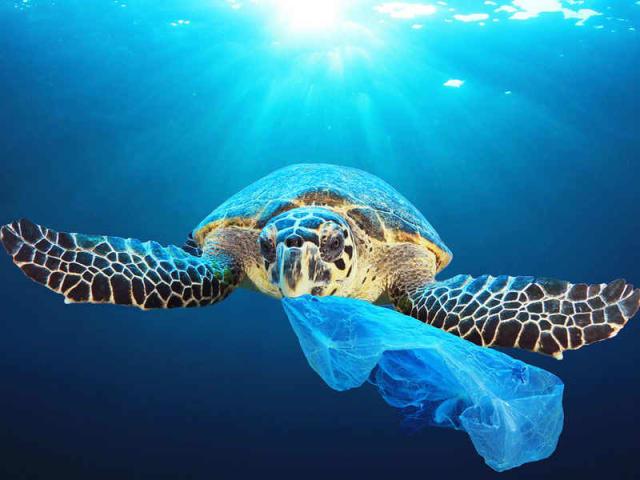 plastica monouso direttiva europea