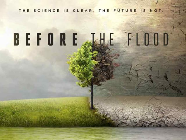 before the flood