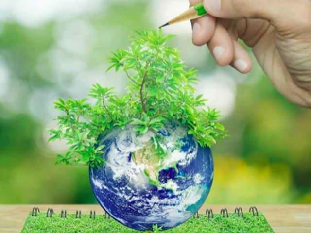 giornata della biodiversità - giornata mondiale della biodiversità 2020