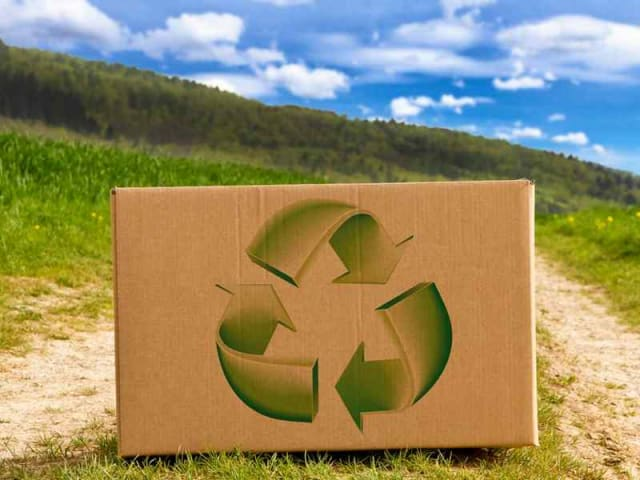 Sustainable Paper and Packaging