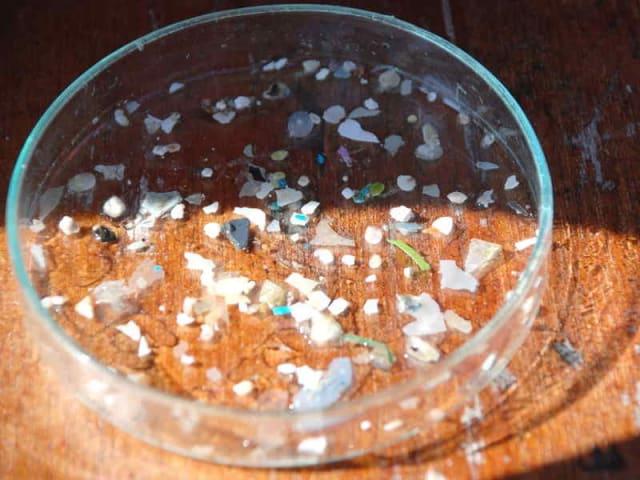 Plastic Busters MPAs