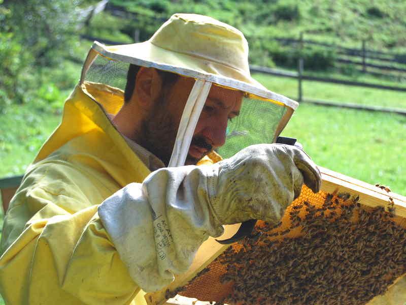 Uso dei pesticidi: da Strasburgo arriva un segnale positivo