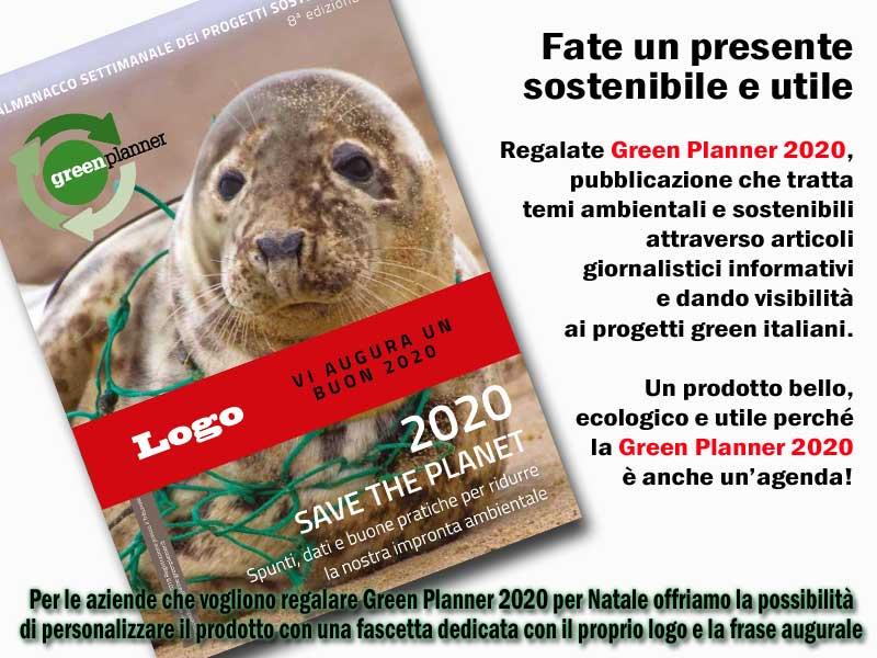 regalare green planner 2020