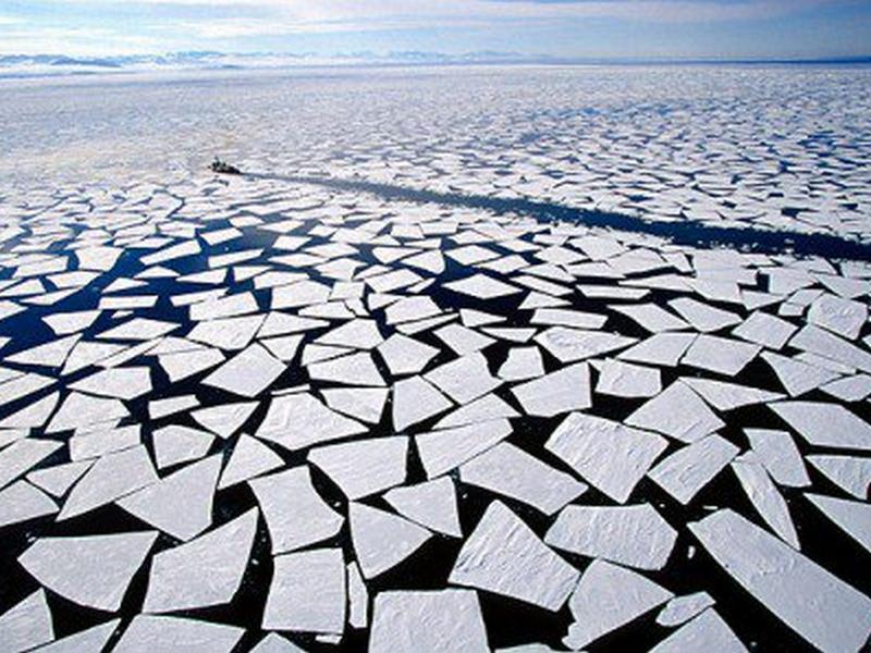 cambiementi climatici