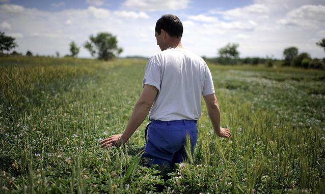 start-up agricole
