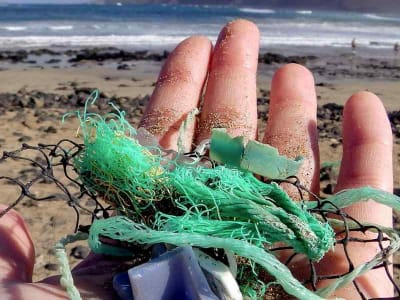 microplastiche nelle acque