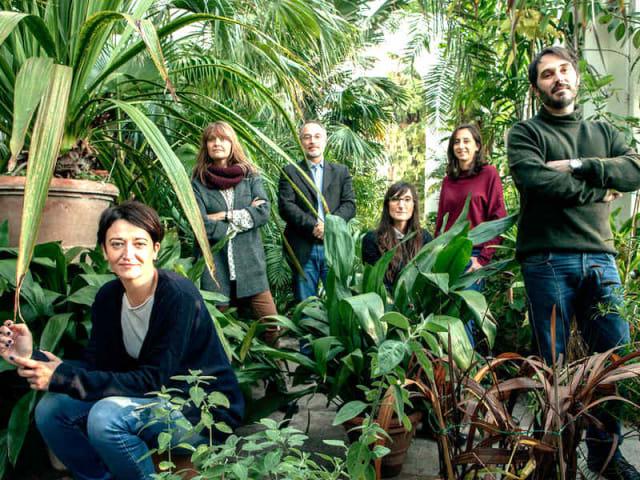 god is green - podcast manifattuira tabacchi