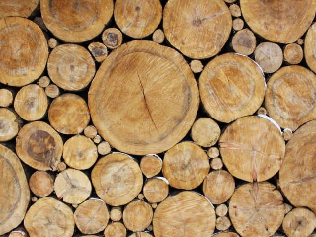 legno urbano