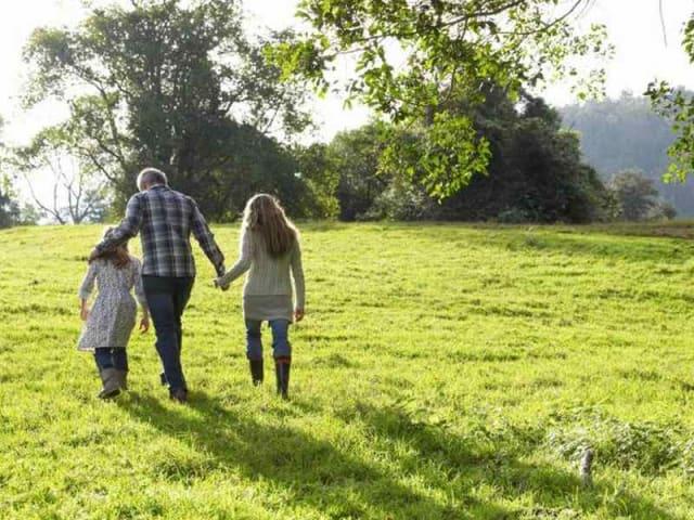 effetti del verde sulla salute