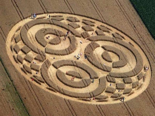 economia circolare in agricoltura