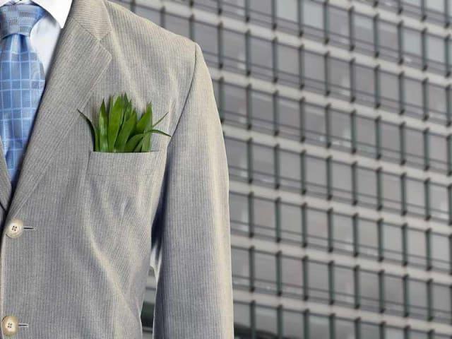 green economy e anaciday