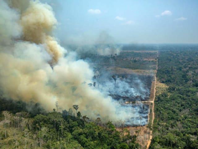 Giornata globale di azione per l'Amazzonia