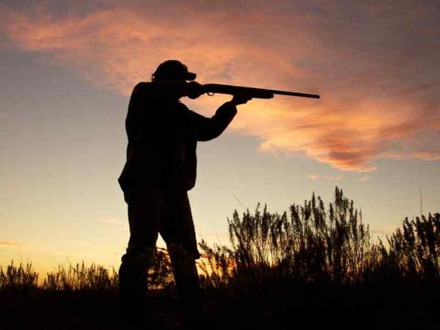 stop alla caccia