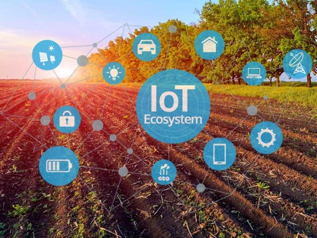 iot agricoltura precisione - Internet of Things