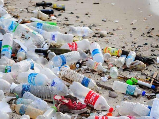 Piccole mani spiagge pulite