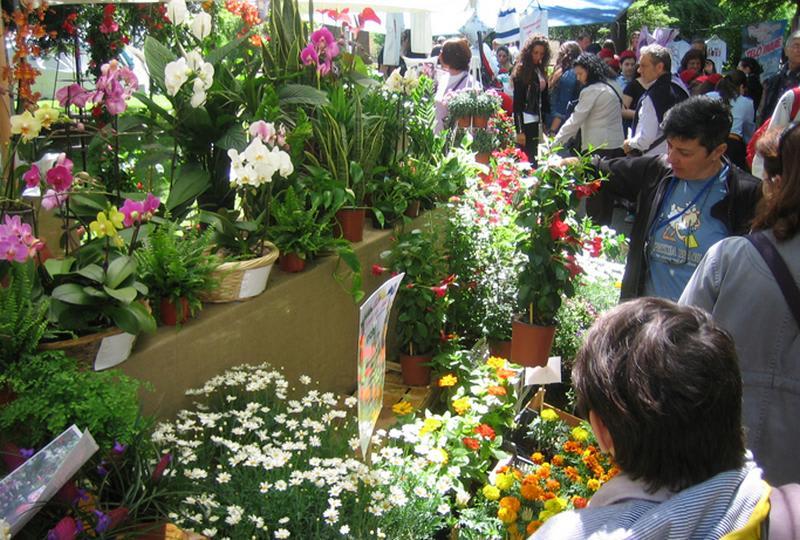 Planta il giardino e non solo, all'Orto Botanico di Napoli