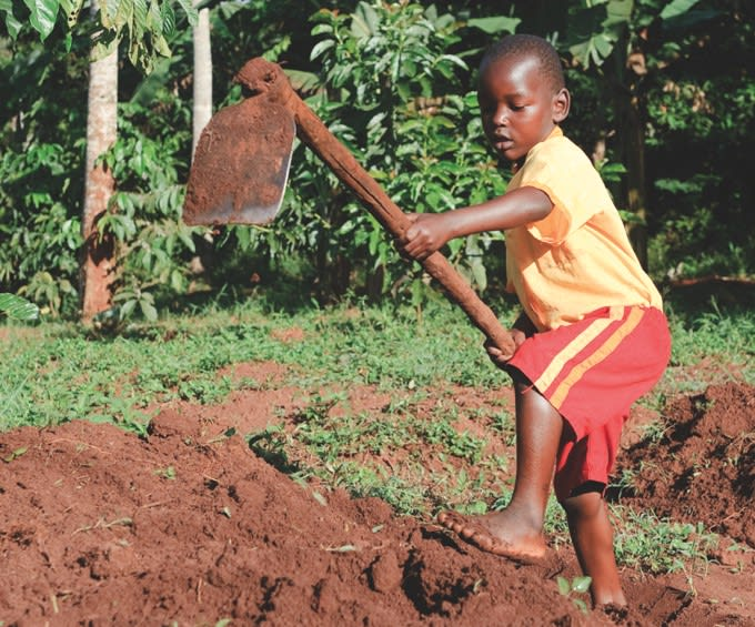 100 orti in Africa, il progetto green in crowdfunding di Slow Food