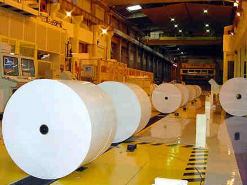 Sempre più verde e collaborativa l'industria della carta