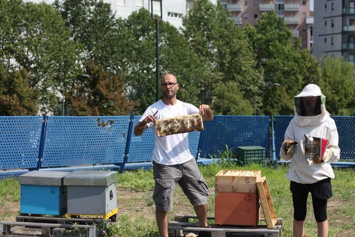Da New York a Londra e Milano: ecco l'apicoltura in città