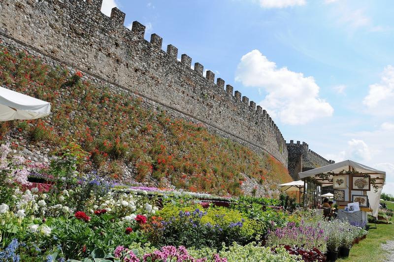 Fiori nella Rocca: mostra mercato di piante rare