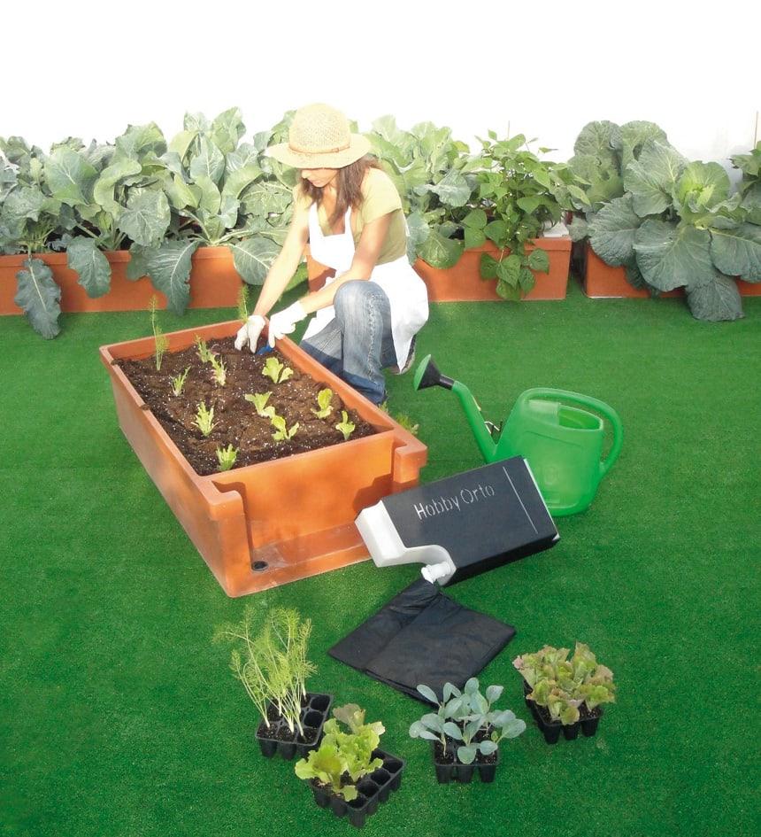 Hobby Orto, per realizzare un orto vero sul proprio balcone