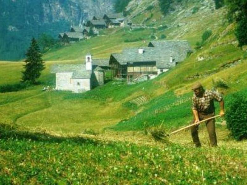 agricoltura trentina