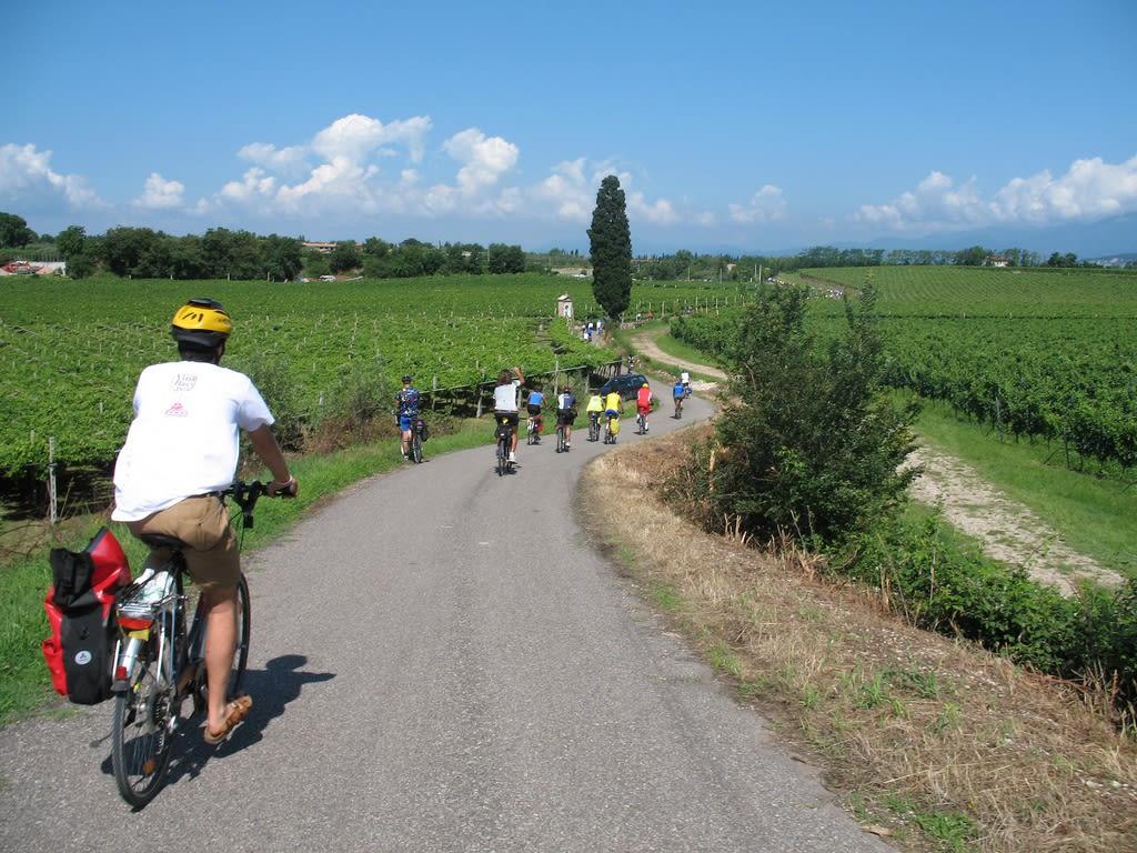 Bicistaffetta, tutte le strade portano a Roma, anche in bicicletta