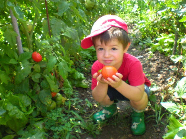 bambini nell'orto