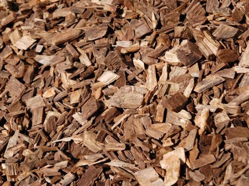 Biomasse solide, nasce un comitato di tutela del settore