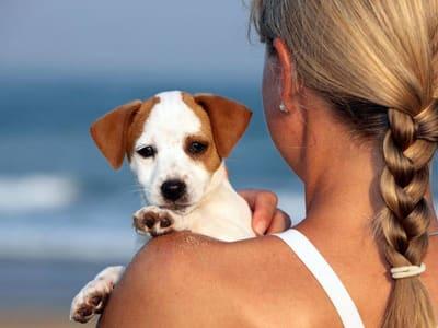 vacanze con animali domestici