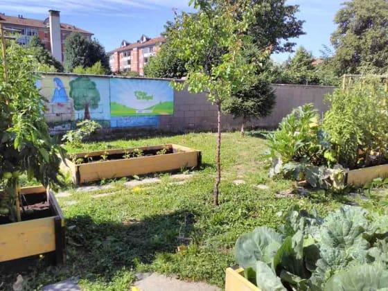 Il giardino di corte - concorso Myplant&Garden
