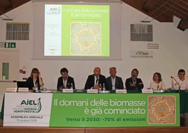 riduzione biomasse legnose