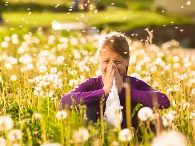 persone allergiche - pollen app