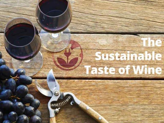 the sustainable taste of wine
