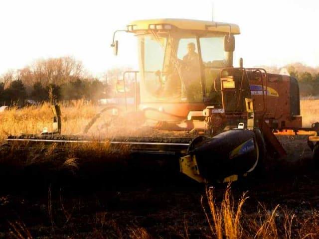 imballaggi agricoli a fine vita