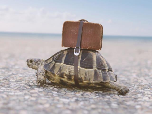 turismo responsabile e sostenibile