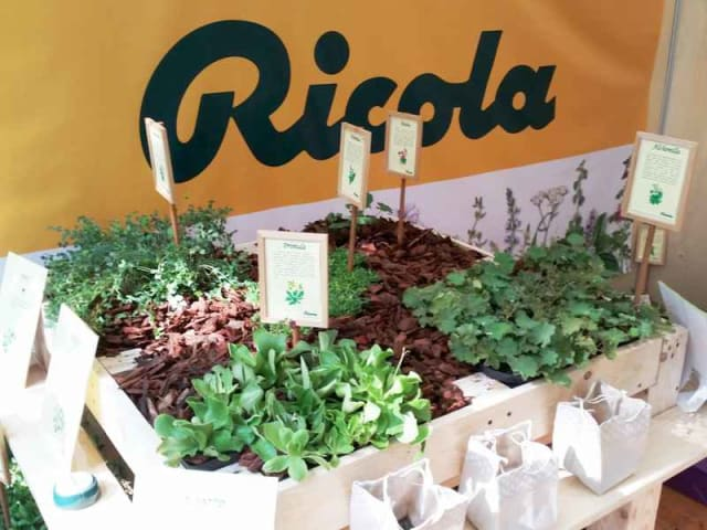 erbe aromatiche - corsi gratuiti - ricola