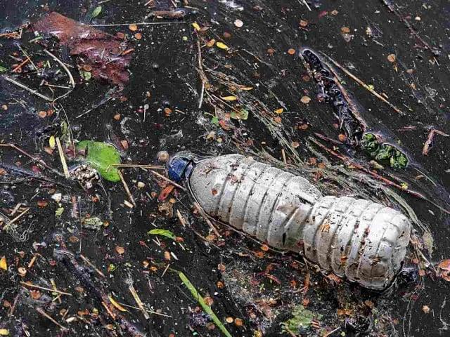 riciclo contenitori bevande in plastica