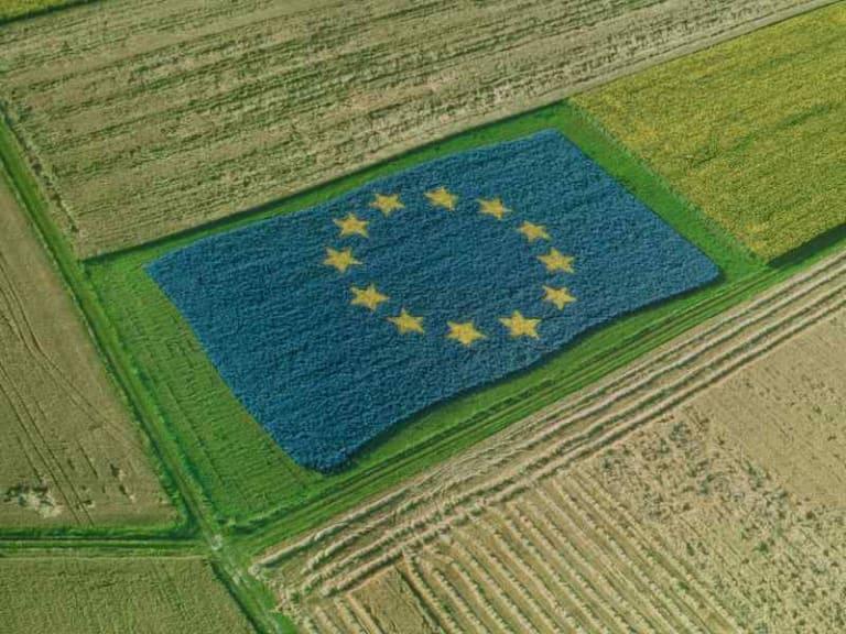 Politica agricola europea deve basarsi sulla sostenibilità