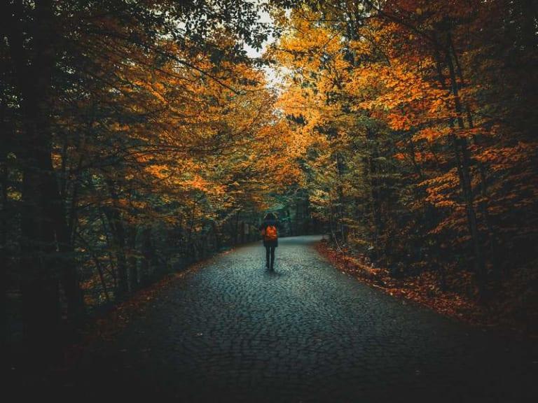 Camminare a passo lento, nella natura, con i viaggi su misura